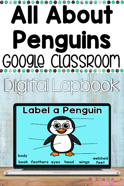 Google Classroom Digital Penguin Lapbook for Kindergarten or 1st grade January science lesson. Can be used digitally in whole groups or independently and includes labeling, vocabulary, facts, video, life cycle, and more.